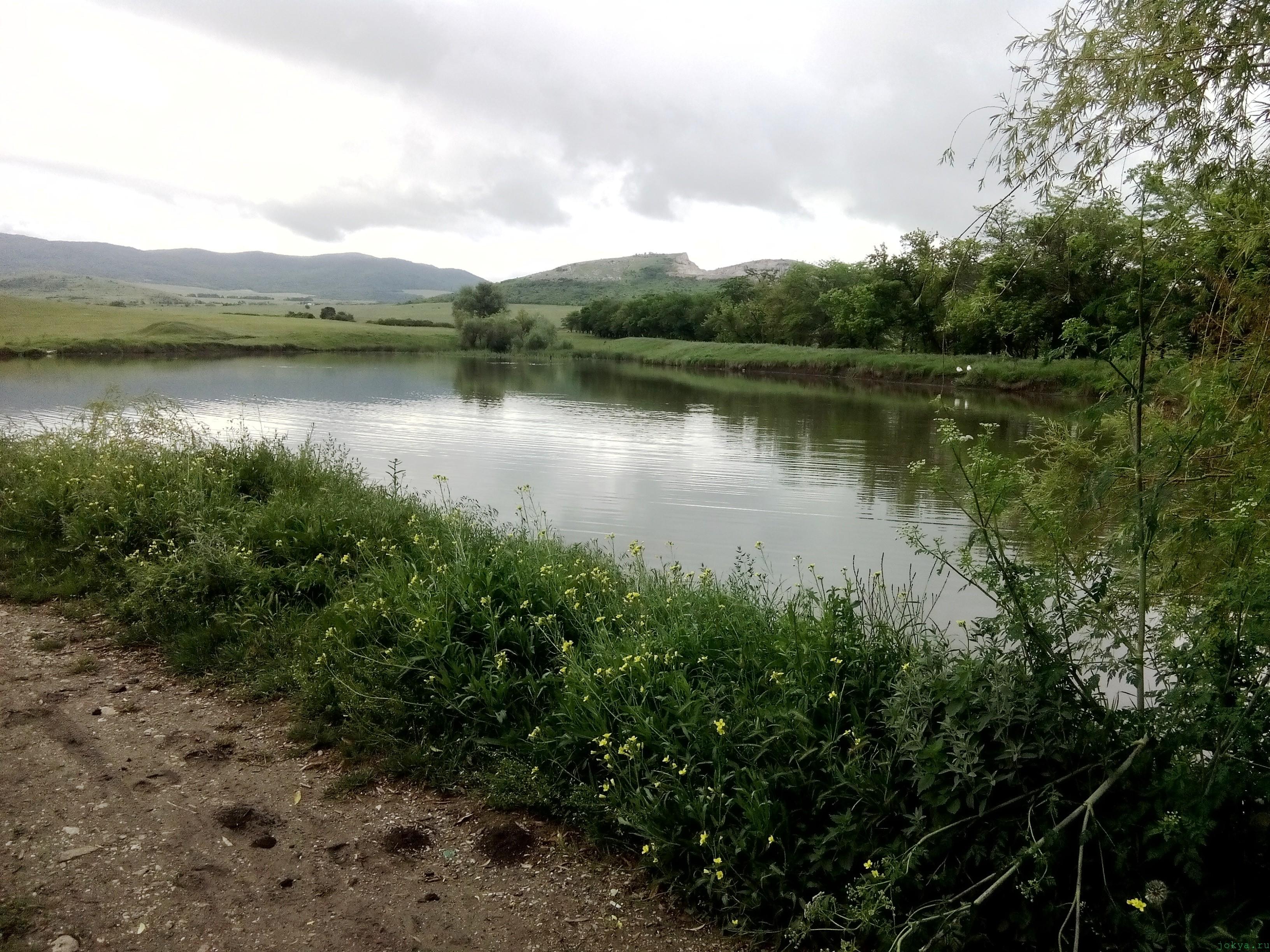 Бесплатный пруд Бурчек: село Кирпичное фото заметка о Крыме jokya.ru