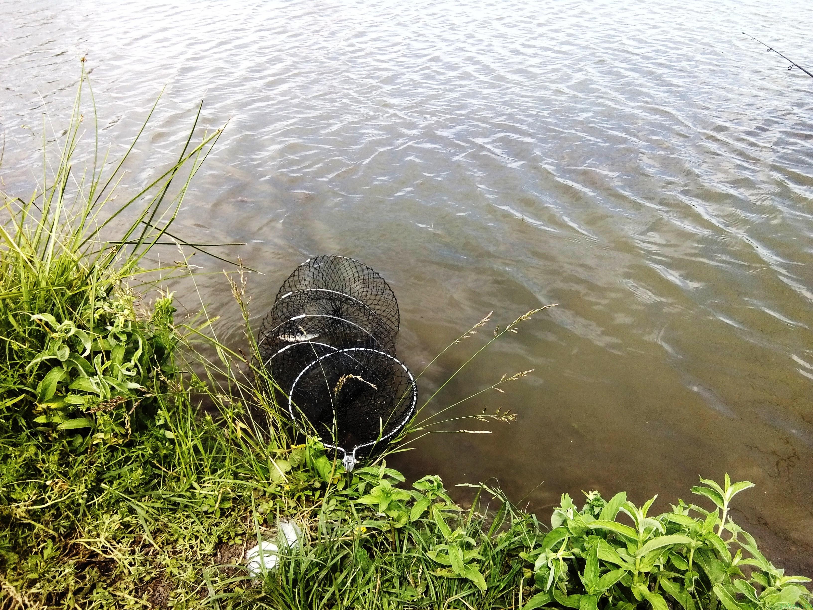 Бурчек: водоемный пруд в кирпичном возле башни фото заметка о Крыме jokya.ru