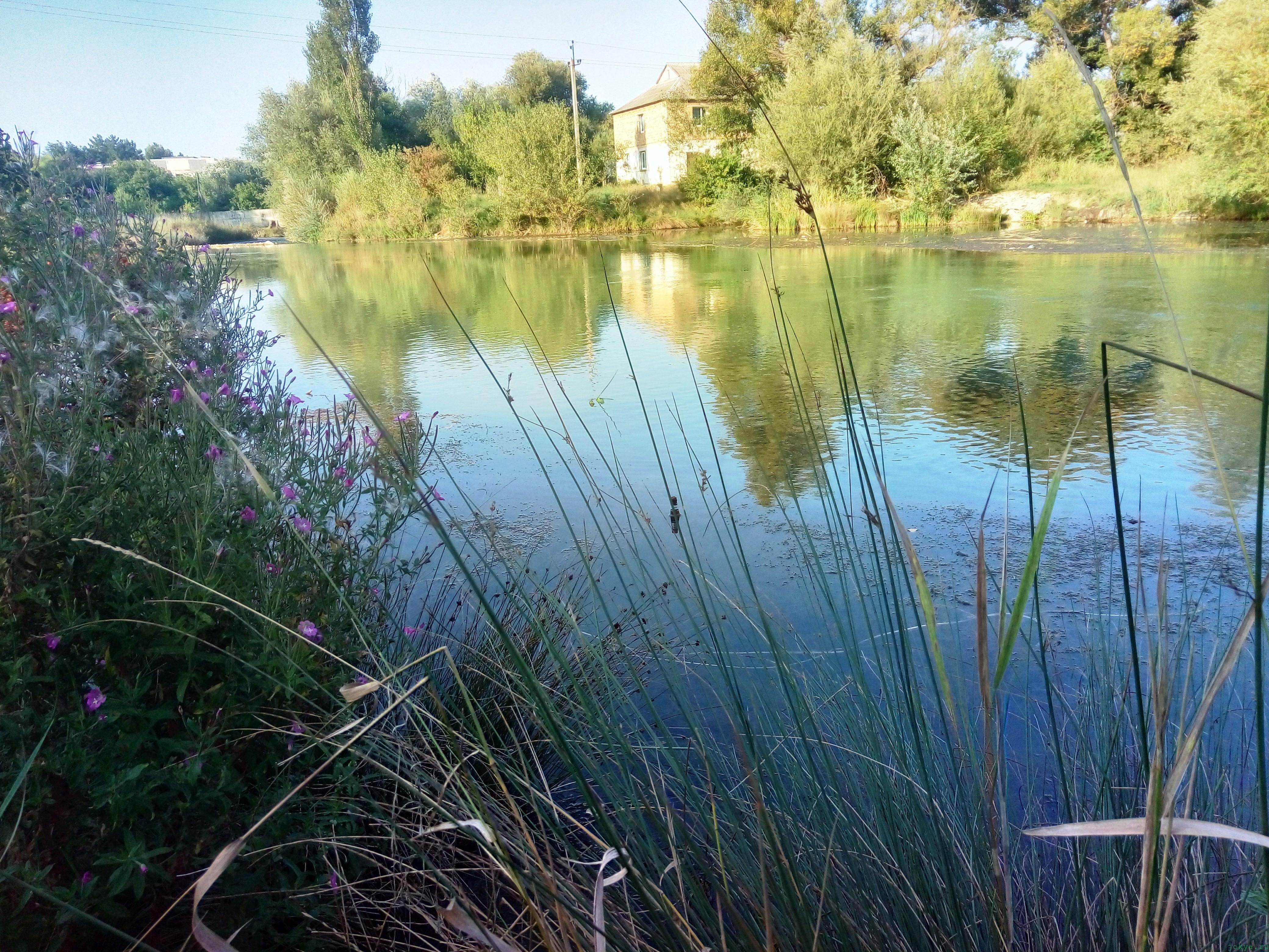 Как ловить окуня на реке фото заметка из моей реальности в Крыму