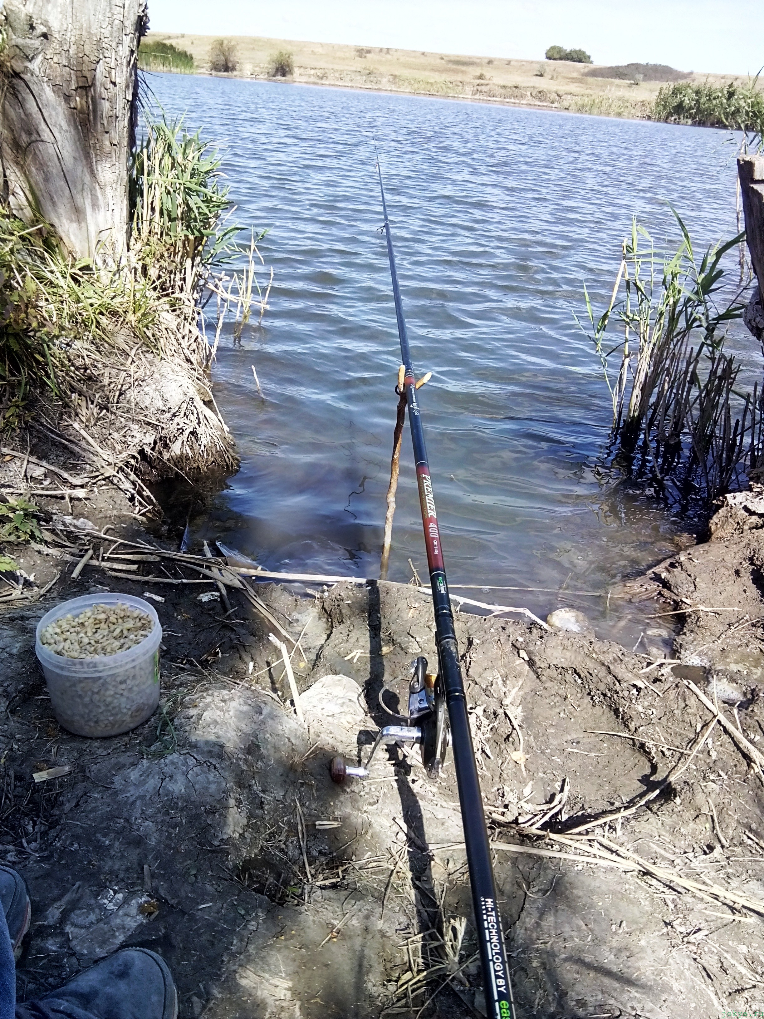 Как ловить плотву на пруду Курник: пруды села Чернополья фото заметка о Крыме jokya.ru