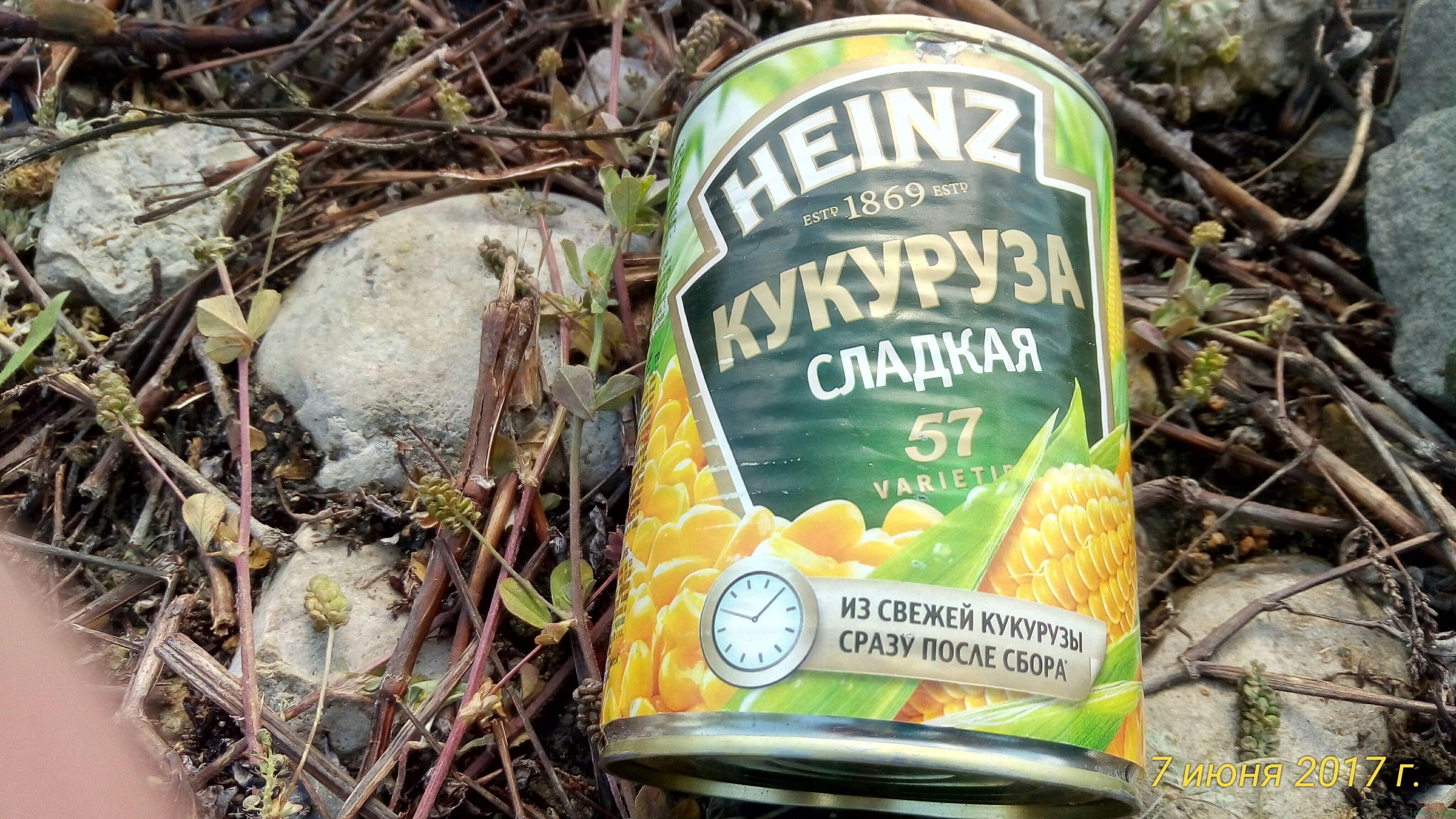 Фото кукурузы для рыбалки фото заметка о моей реальности в Крыму jokya.ru