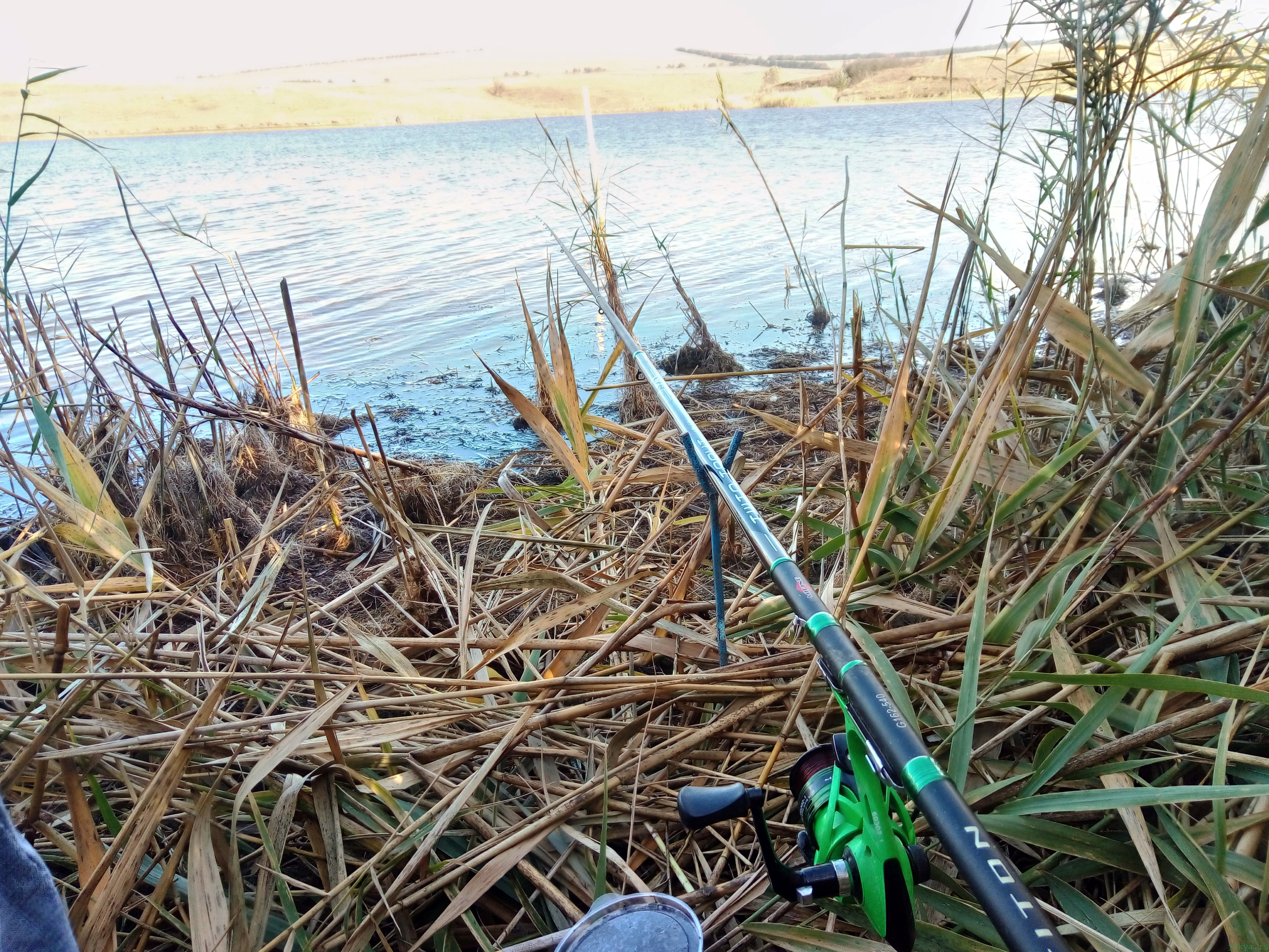 Ловля карася на удочку фото заметка из моей реальности в Крыму jokya.ru