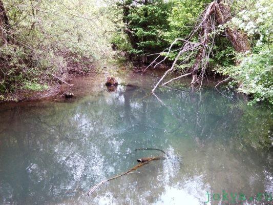 Мини поход по рыбным местам по речке кучук-карасу фото заметка о Крыме jokya.ru