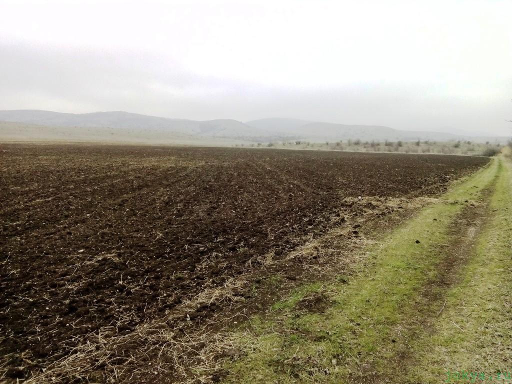 О полях по пути к водоему киличек фото заметка о Крыме jokya.ru