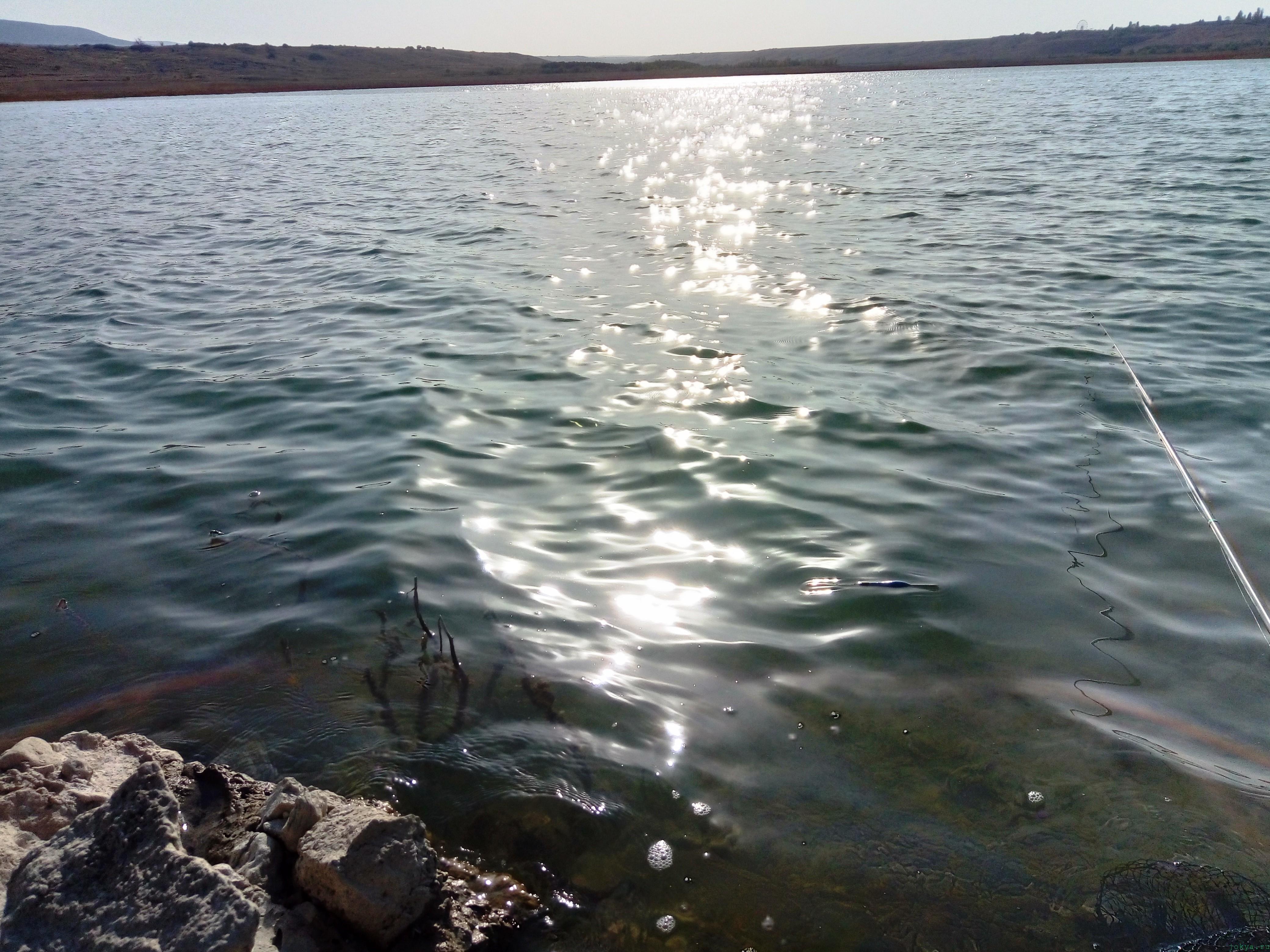 Отчет рыбалки на Тайгане за 18 сентября 2017 года ловля уклейки фото заметка из моей реальности в Крыму jokya.ru
