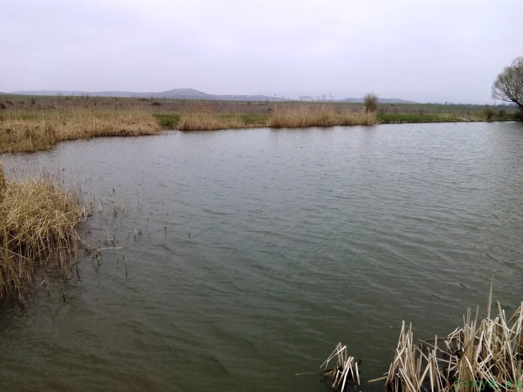 Отдых на природе на водоеме Курник фото заметка о Крыме jokya.ru