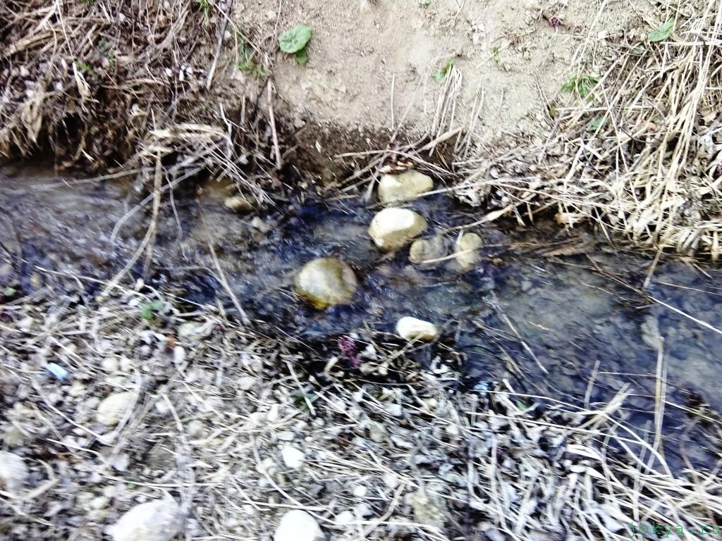 Ответила это не речка: это канава фото заметка о Крыме jokya.ru