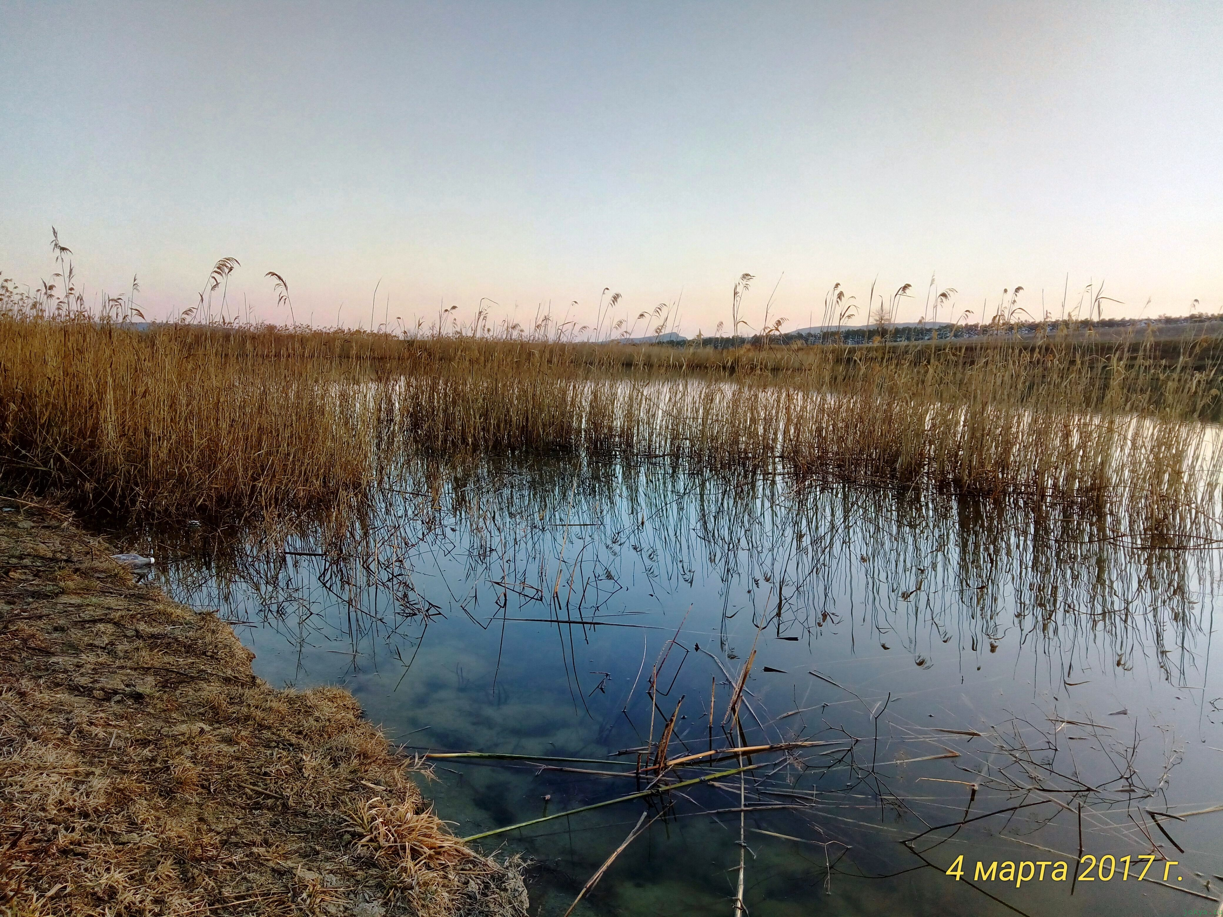 Пешком на рыбалку на карася на водоем: фото заметка о моей реальности в Крыму jokya.ru