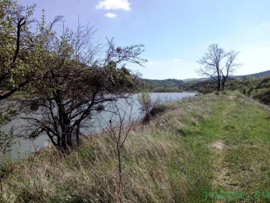 Платный пруд в селе: Богатое фото заметка о Крыме jokya.ru