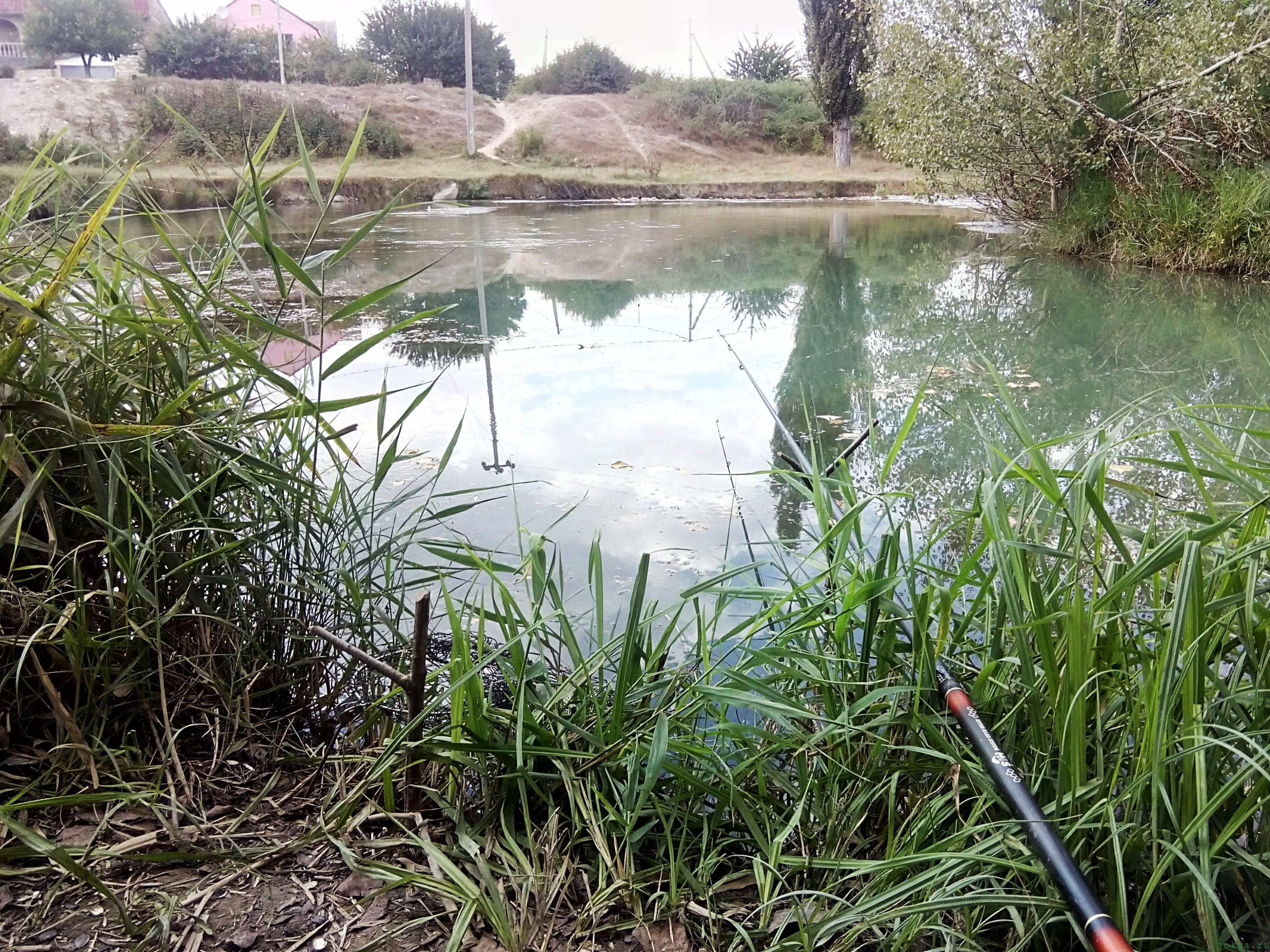Прикорм для карася: ловля на речке на течении фото заметка о Крыме jokya.ru