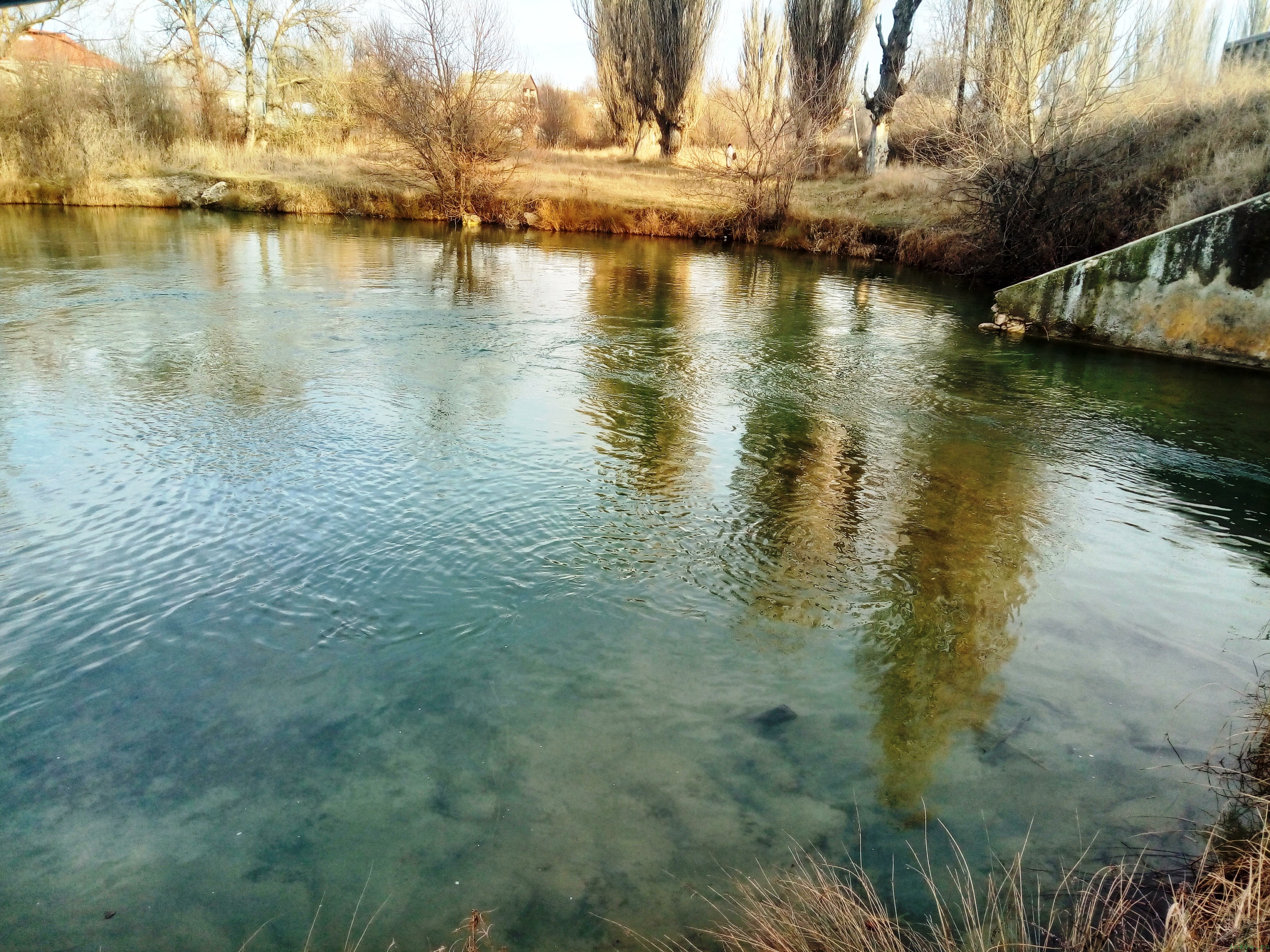 Прогулка на речку в поиске по клевок рыбы фото заметка из моей реальности в Крыму jokya.ru