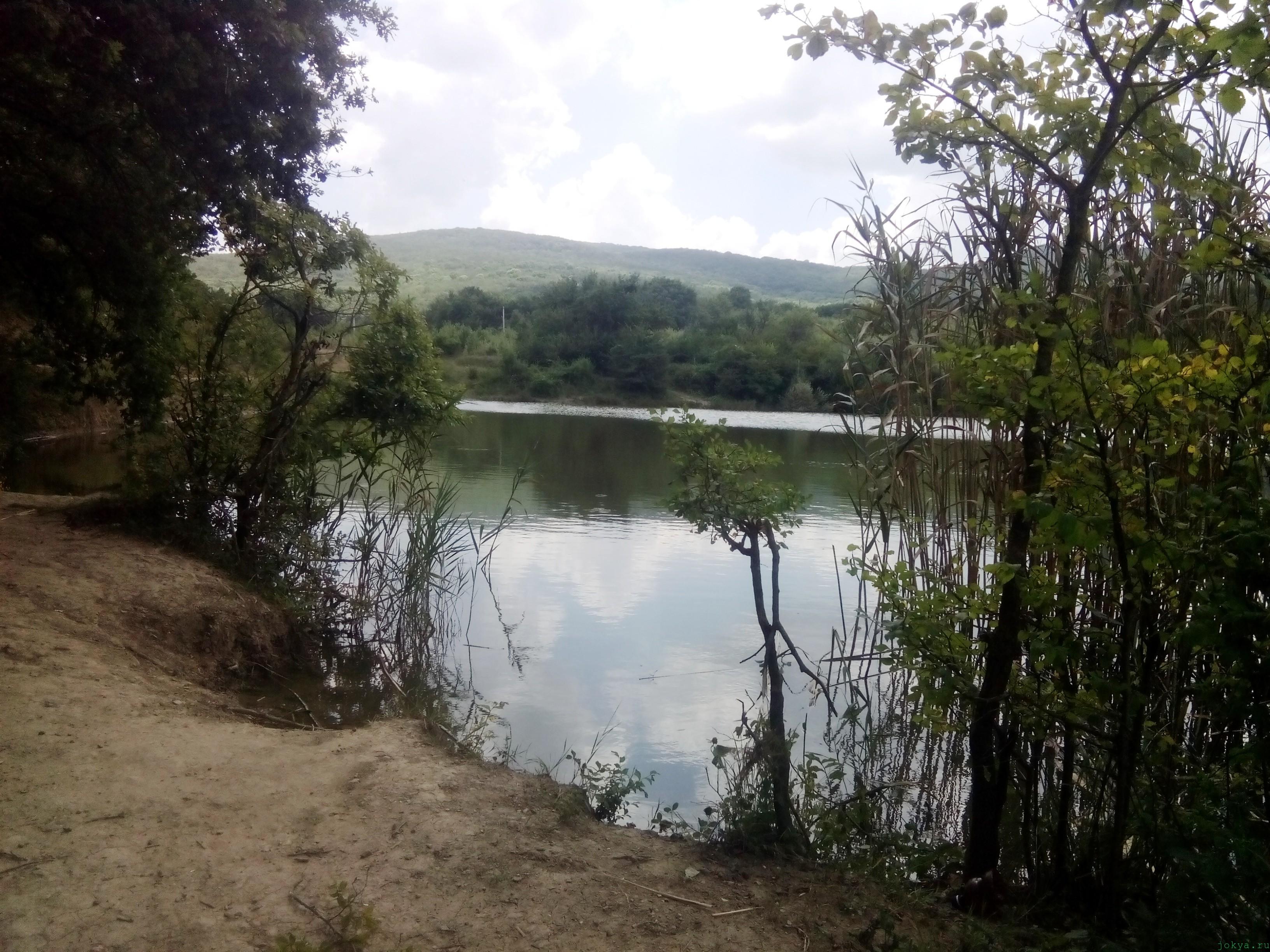 Пруд Ольховка в долине реки Танасу фото заметка о Крыме jokya.ru