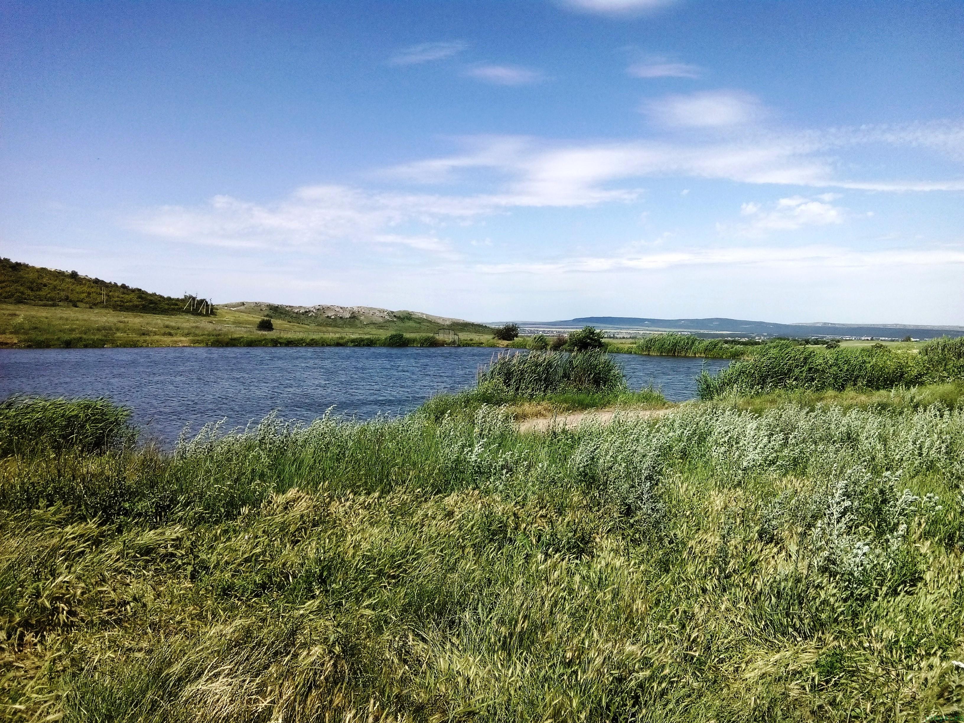 Пруд в селе Ульяновке фото заметка о Крыме jokya.ru