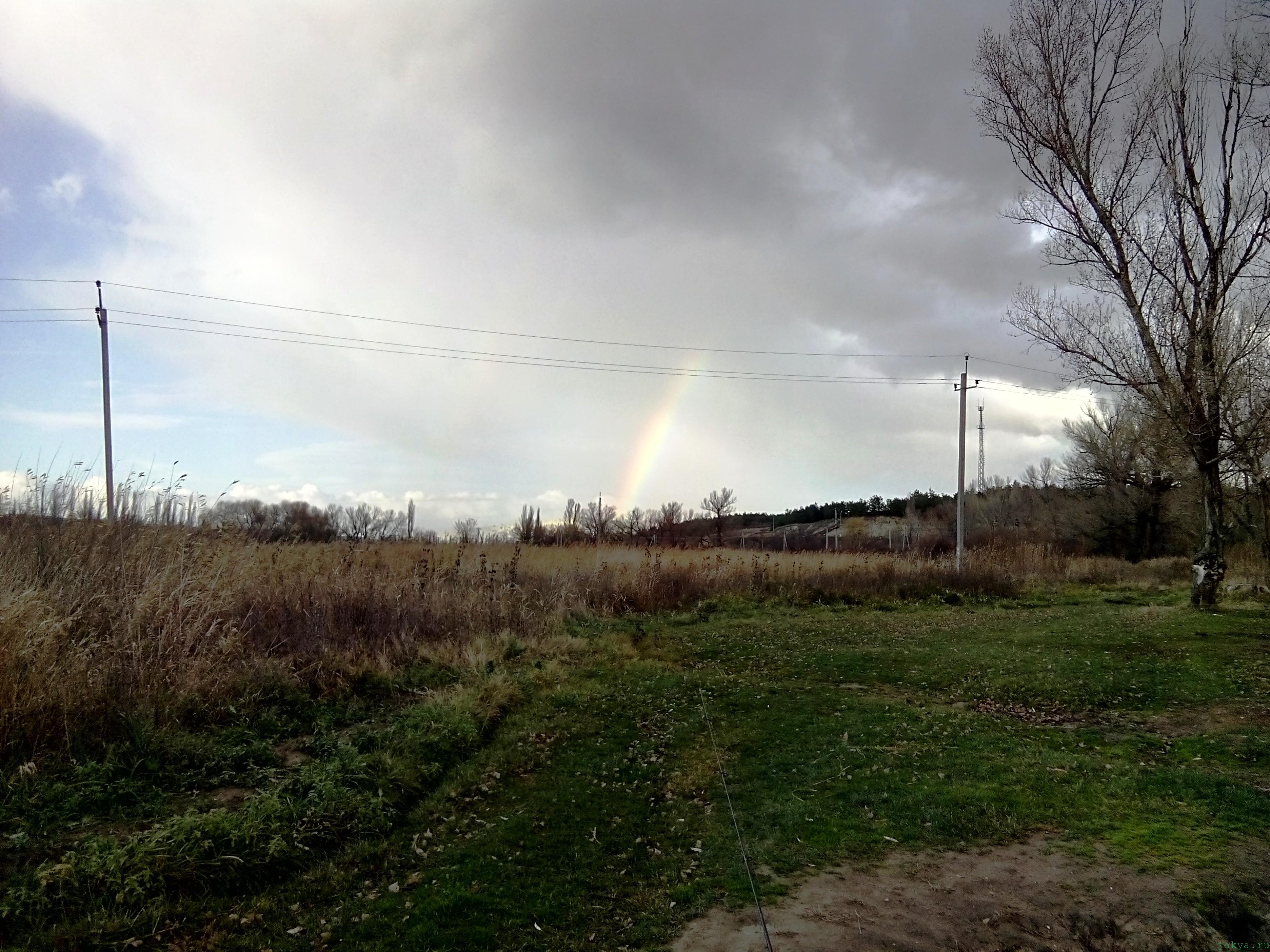 Радуга над горизонтом после ливневого дождя моя фото реальность в Крыму jokya.ru