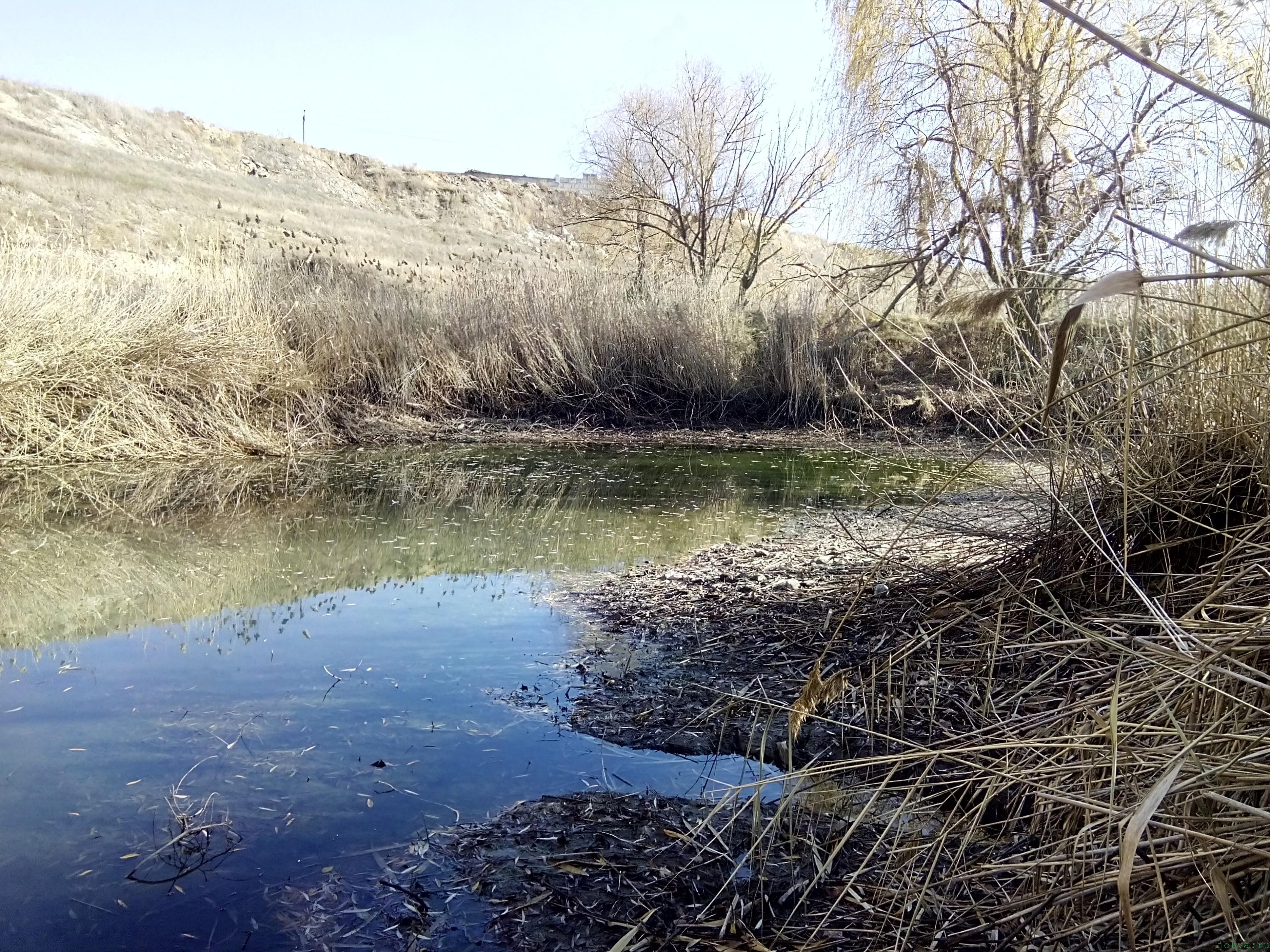 Рыбалка осенью с удочкой: осенний пейзаж фото в ноябре моя фото реальность в Крыму