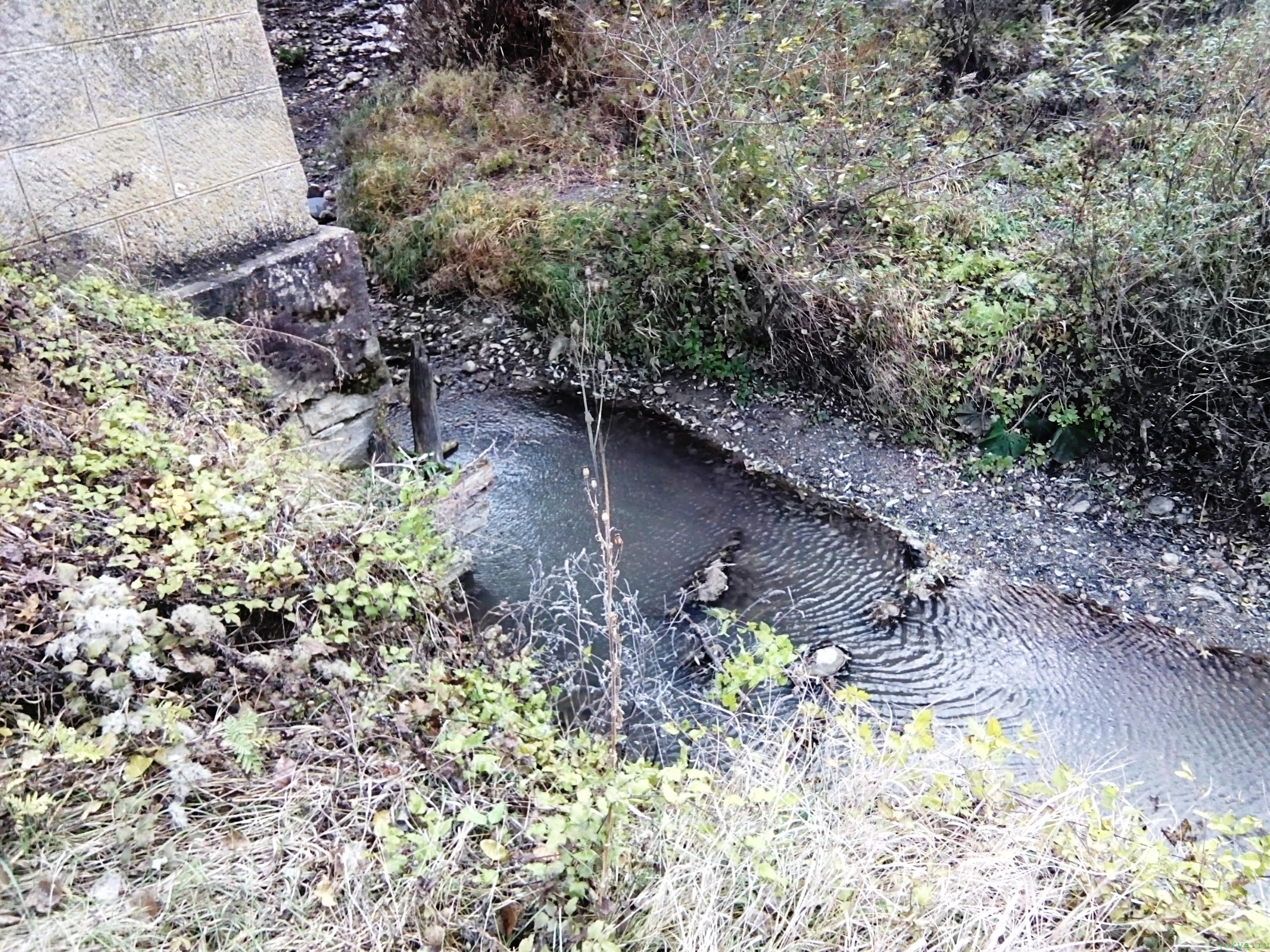 Танас река осенью в ноябре в Крыму моя фото реальность в Крыму jokya.ru
