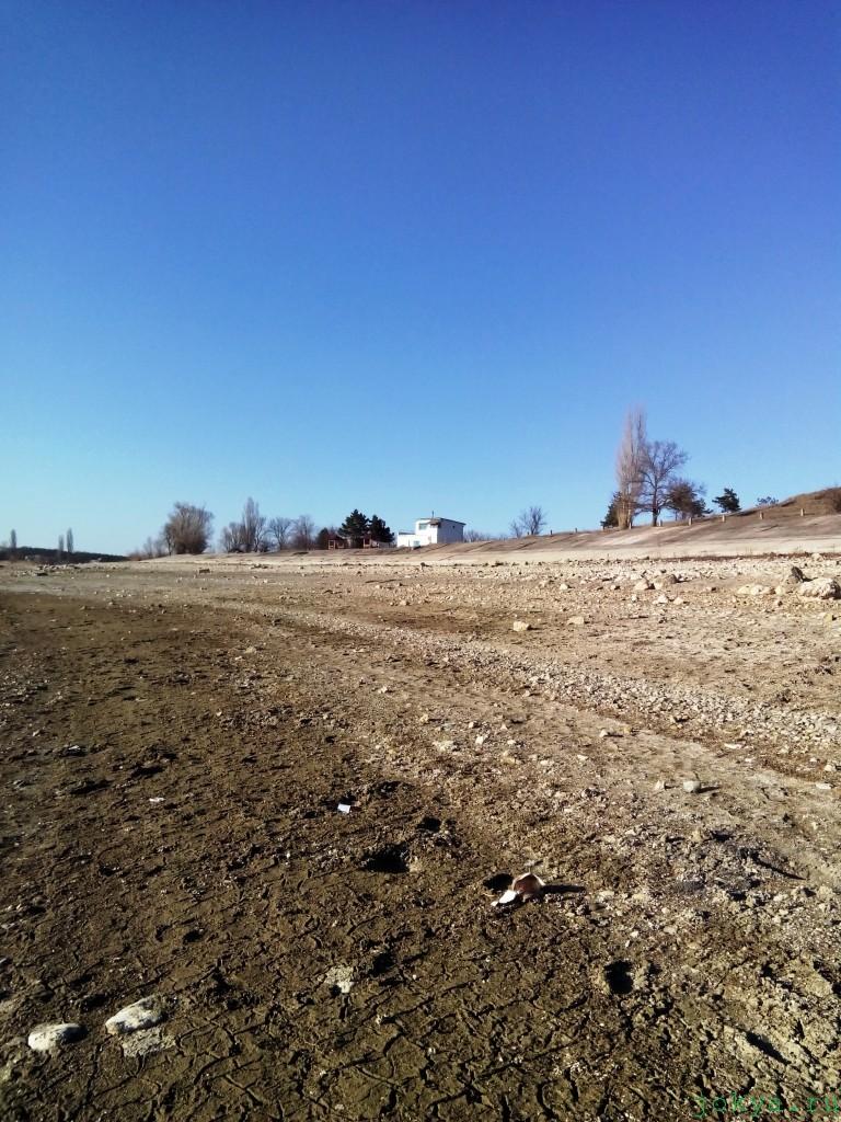 Тайган в марте прошлого года фото сюжет jokya.ru