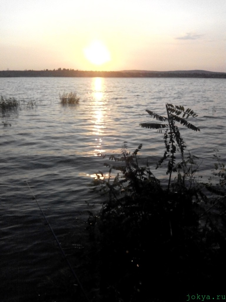 Закат на водоеме Тайган: закат солнышка над сафари парк львов фото сюжет jokya.ru