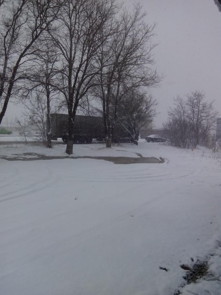 Зима в Крыму: ночь с 31 января на 1 января фото сюжет от jokya.ru