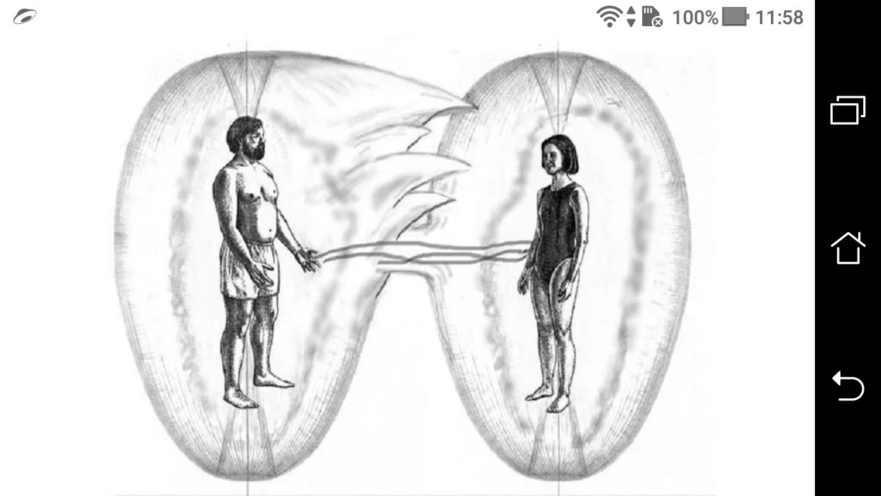 фото - jokya.ru - Мои размышления о привязках и их пагубном влиянии на человека