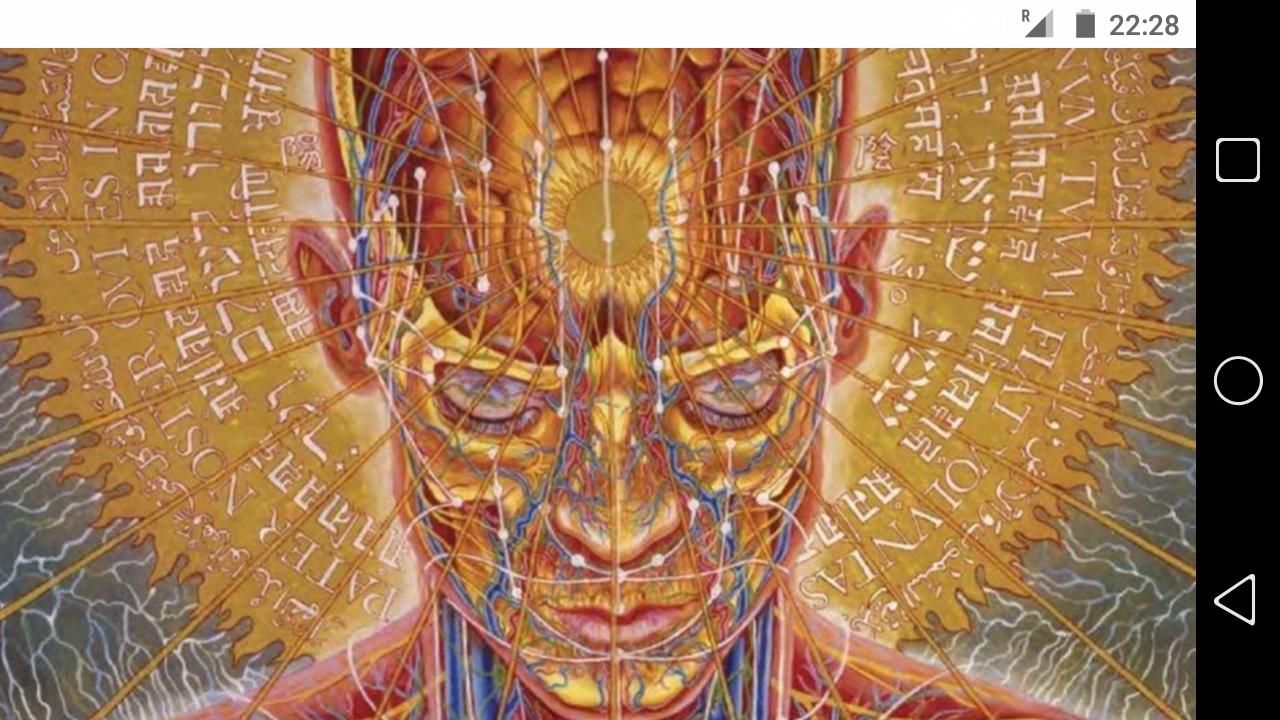 фото - jokya.ru - Сознание является энергопроцессом осознания матричных программ 3-й и 4-й мерности