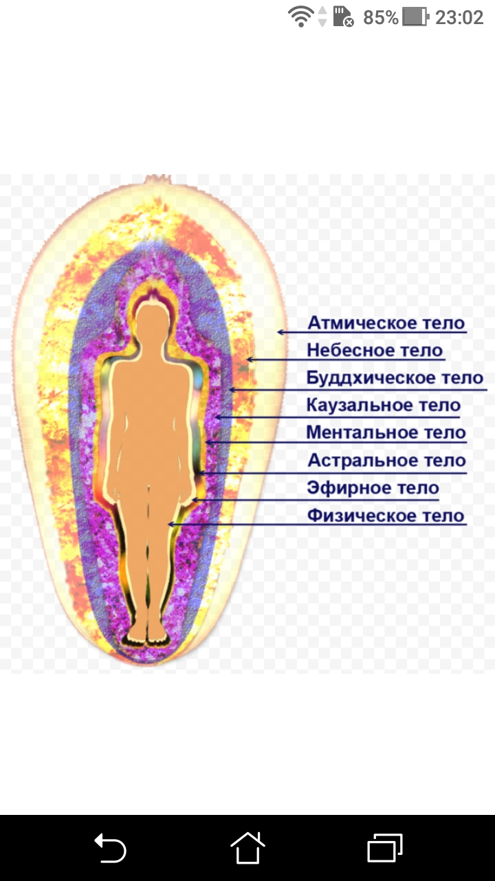 фото - jokya.ru - Наблюдатели, практикующие духовное развитие на пути к матрице 4D