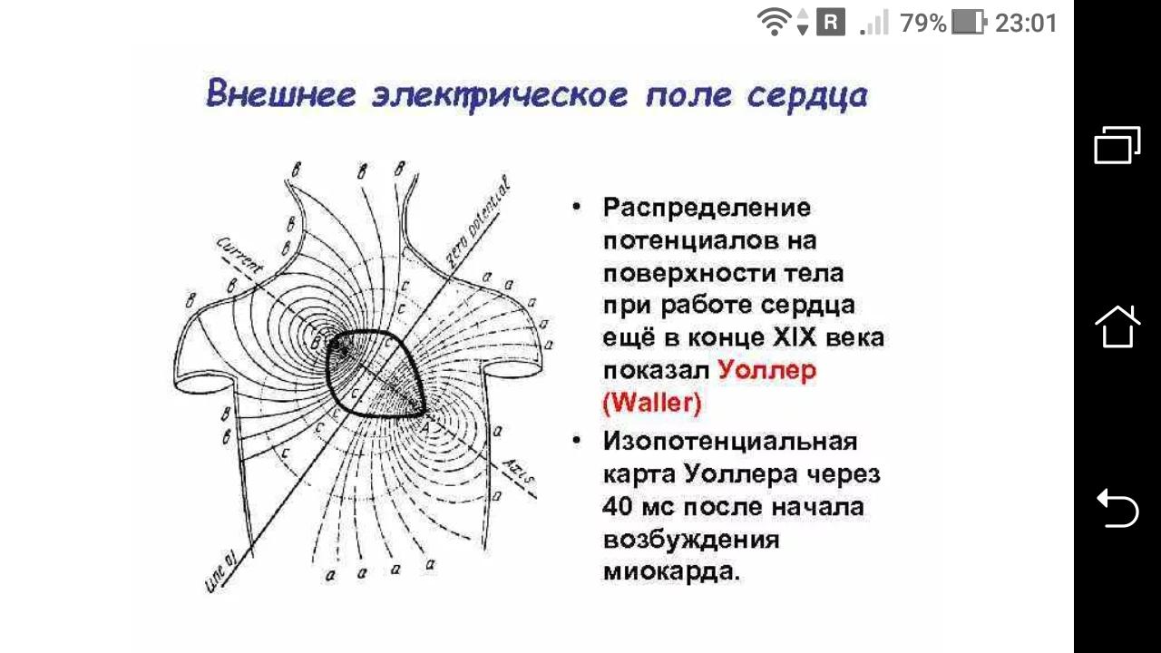 фото - jokya.ru - Сердечные каналы - открытие электромагнитных сердечных полей в 4D