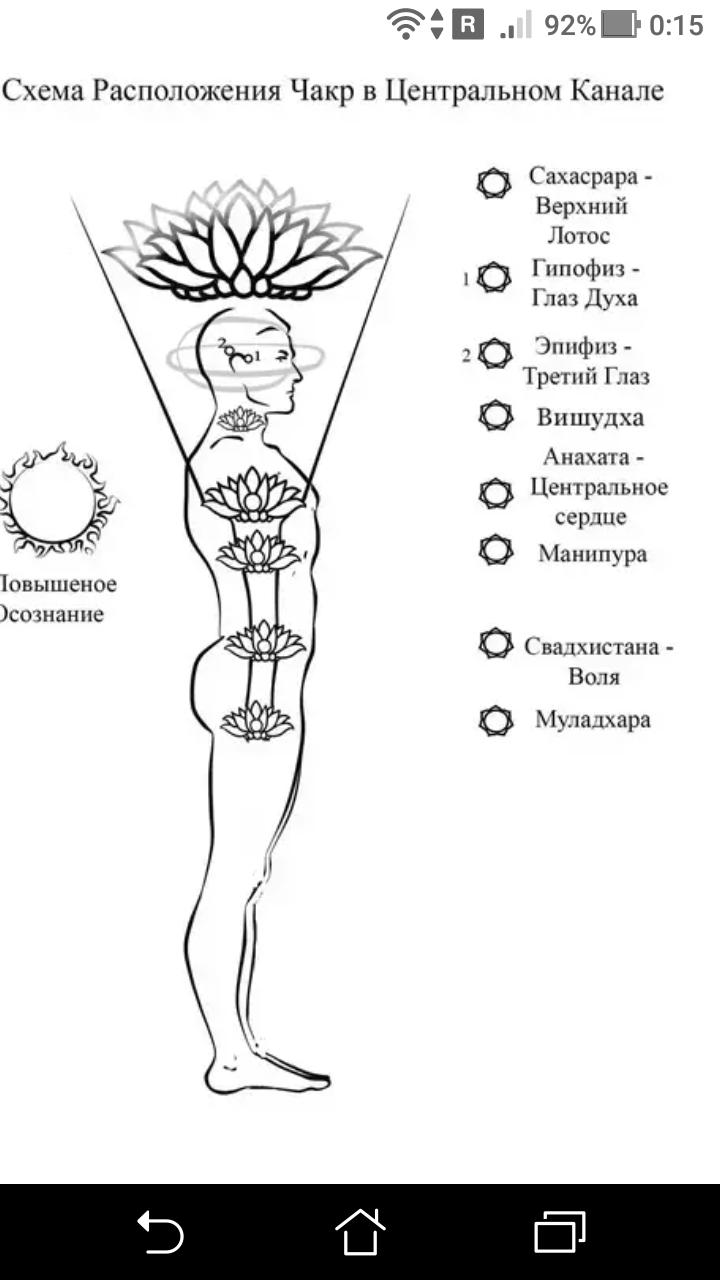 фото - jokya.ru - Частота и энергоемкость чакральной системы