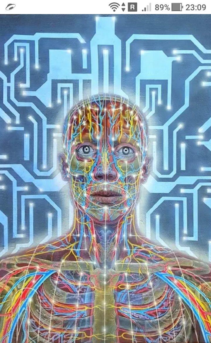фото - Декодирование алгоритмов сознания и осознание себя в новом мире 4-й мерности - https://jokya.ru/